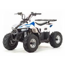 Квадроцикл Motoland EAGLE 110